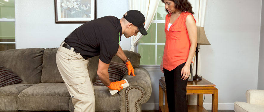 Rome, GA carpet upholstery cleaning